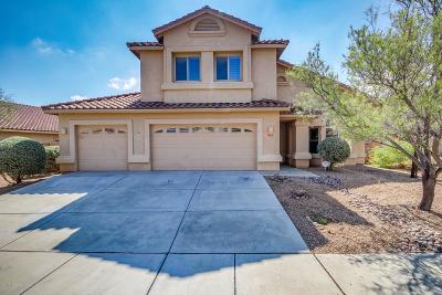 Tucson Single Family Home For Sale: 7952 N Higgins Feather Drive