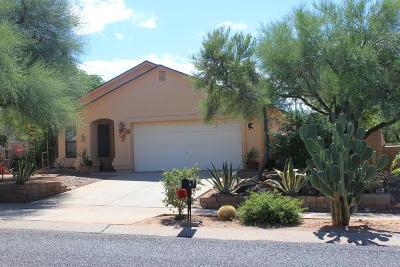 Corona de Tucson Single Family Home For Sale: 25 W Andrew Potter Street