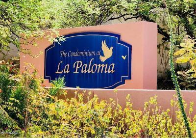 Tucson Condo For Sale: 6352 N Vuelta Tajo #160
