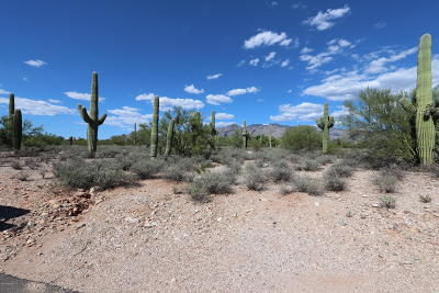 Tucson Residential Lots & Land For Sale: 4316 N Placita Del Rodal #265