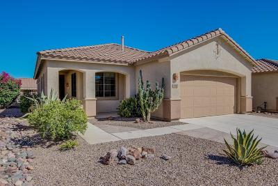 Tucson Single Family Home For Sale: 7972 W Blue Heron Way