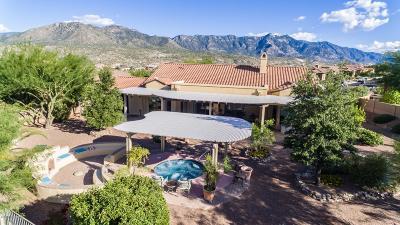 Single Family Home For Sale: 36168 S Desert Sun Drive