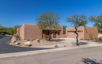 Tucson Single Family Home For Sale: 5072 S Thunder Sky Way