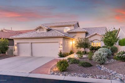 Saddlebrooke Single Family Home For Sale: 63646 E Desert Peak Drive