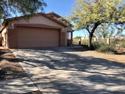 Tucson Single Family Home For Sale: 3847 N Nash Creek Court