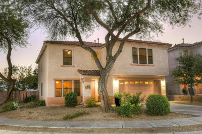 Tucson Single Family Home For Sale: 4093 W Rocky Spring Drive