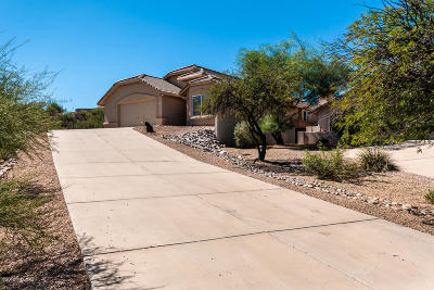 Tucson Single Family Home For Sale: 824 S Saguaro Ridge Place