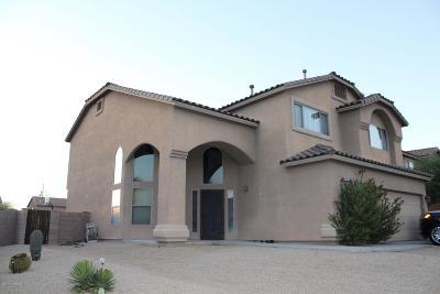 Pima County Single Family Home For Sale: 4064 S Amber Rock Avenue