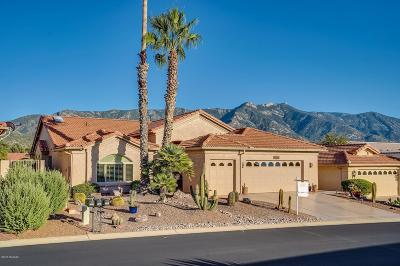 Saddlebrooke Single Family Home Active Contingent: 37965 S Mountain Site Drive