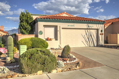 Green Valley  Single Family Home For Sale: 5007 S Gloria View Court