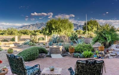 Single Family Home For Sale: 2591 S Rita Vista Drive
