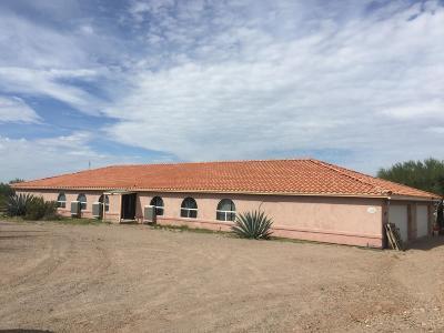 Tucson Single Family Home For Sale: 1955 N Sandario Road