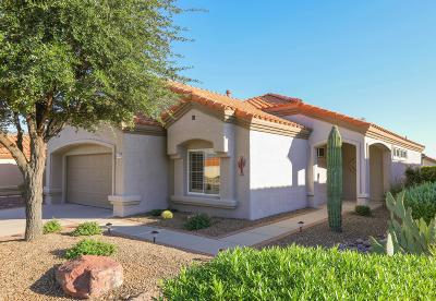 Oro Valley Single Family Home Active Contingent: 2186 E Amaranth Street