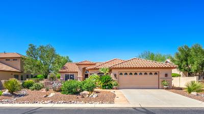 Saddlebrooke Single Family Home For Sale: 39648 S Sand Crest Drive