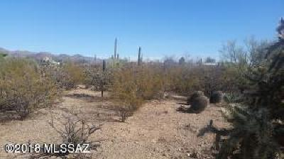 Residential Lots & Land For Sale: 2000 N Camino Altar