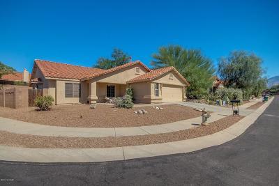 Tucson Single Family Home For Sale: 331 E Shore Cliff Place