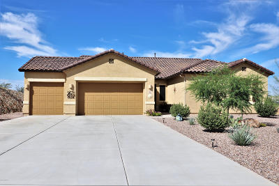 Sahuarita Single Family Home For Sale: 252 S Vaughn Canyon Place