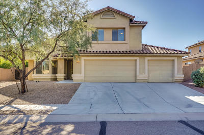 Pima County Single Family Home For Sale: 7567 S Climbing Ivy Drive