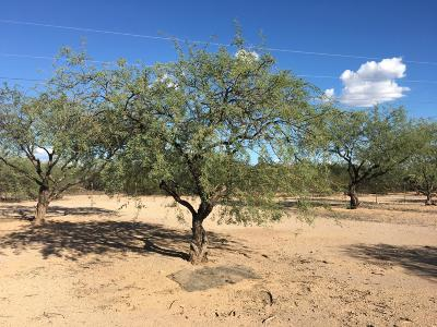 Residential Lots & Land For Sale: 4950 S Browning Lane