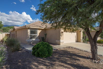 Pima County, Pinal County Single Family Home For Sale: 13230 N Mortar Pestle Court