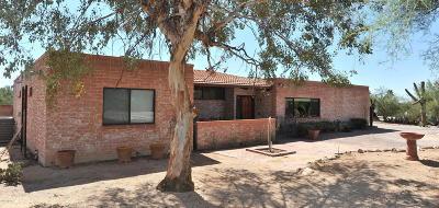 Single Family Home For Sale: 1121 W Sahara Palms Drive