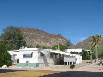 Tucson Mobile Home For Sale: 6012 W Rafter Circle Street