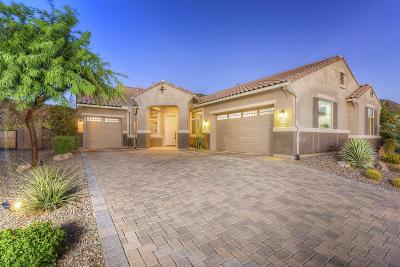 Marana Single Family Home For Sale: 9690 N Saguaro Breeze Way