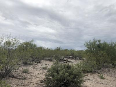 Tucson Residential Lots & Land For Sale: S Pinto Place