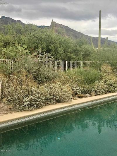 Tucson Single Family Home Active Contingent: 3827 E Gibbon Mountain Place