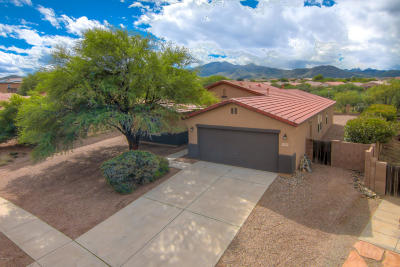 Vail Single Family Home Active Contingent: 572 S Sterling Vistas Way