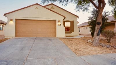 Marana Single Family Home For Sale: 11373 W Massey Drive