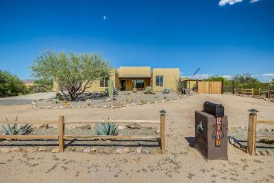 Pima County Single Family Home For Sale: 4047 S Spiney Lizard Lane