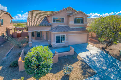 Tucson Single Family Home For Sale: 713 W Pizzicato Lane