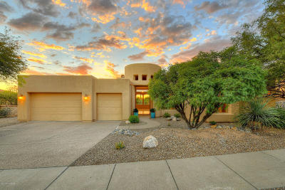 Pima County Single Family Home For Sale: 4343 E Pinnacle Ridge Place