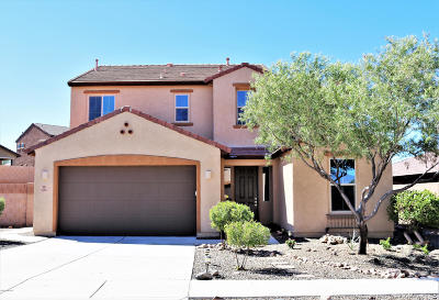 Pima County, Pinal County Single Family Home For Sale: 612 S Desert Haven Road