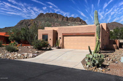 Tucson Single Family Home For Sale: 1940 S Flying Heart Lane