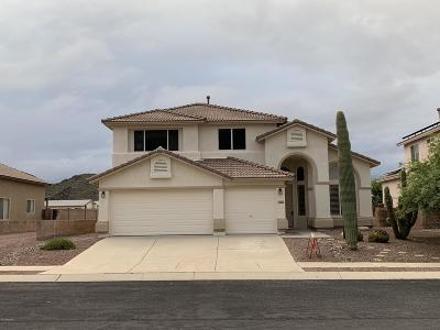 Tucson Single Family Home For Sale: 9205 N Sugar Foot Drive