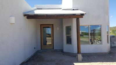 Tucson Single Family Home For Sale: 295 Treighton Jon Place