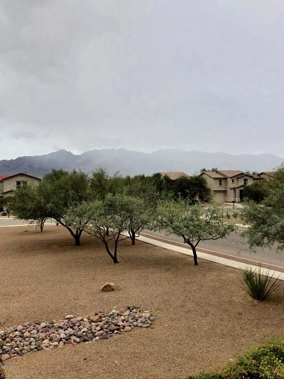 Tucson Single Family Home Active Contingent: 4229 E Deer Dancer Way