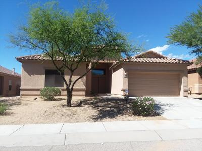 Pima County Single Family Home For Sale: 3932 S Amber Rock Avenue