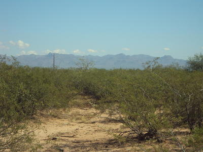 Residential Lots & Land For Sale: W Tucker Road