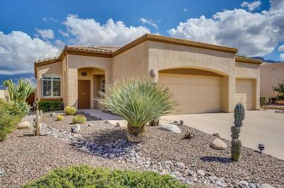 Oro Valley Single Family Home For Sale: 11900 N Labyrinth Drive