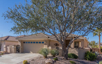 Pima County Single Family Home For Sale: 13473 N Holly Grape Drive