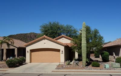 Tucson Single Family Home For Sale: 7984 W Cottonwood Wash Way