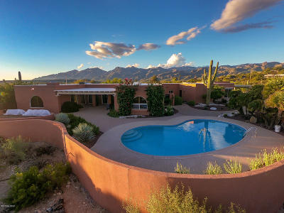 Tucson Single Family Home For Sale: 9500 E Morrill Way