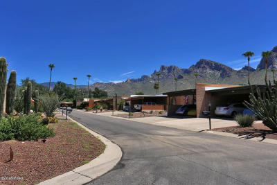 Tucson Townhouse For Sale: 10210 N Valle Del Oro Drive