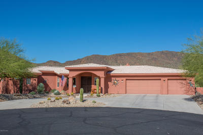 Pima County Single Family Home For Sale: 6048 W Ten Star Drive