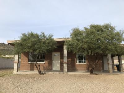 Single Family Home For Sale: 1644 W San Ricardo Boulevard
