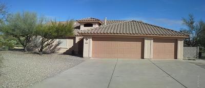 Single Family Home For Sale: 3655 W Camino Alto