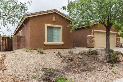 Vail Single Family Home For Sale: 17357 S Indigo Mesa Pass